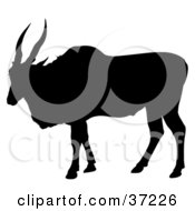 Clipart Illustration Of A Black Silhouetted Large Antelope by dero