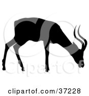 Clipart Illustration Of A Black Silhouette Of A Profile Of A Grazing Antelope by dero