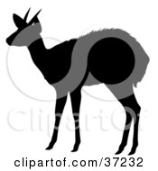 Black Silhouette Of A Profile Of An Alert Antelope