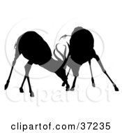 Clipart Illustration Of A Black Silhouette Of Two Male Antelope Wrestling With Their Antlers