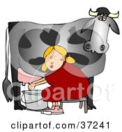 Clipart Illustration Of A Blond Woman Sitting On A Bench And Getting Squirt In The Face While Milking A Black Cow