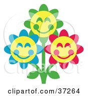 Three Green Blue And Red Happy Flowers With Yellow Centers