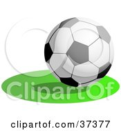 Clipart Illustration Of A Soccer Ball Resting On The Green by Prawny