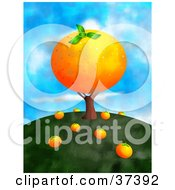 Giant Orange On A Tree With Fallen Fruit On The Ground On Top Of A Hill Against A Sky