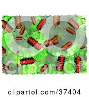 Clipart Illustration Of A Background Of Pillbugs On Green