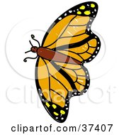 Clipart Illustration Of A Flying Orange Butterfly by Prawny