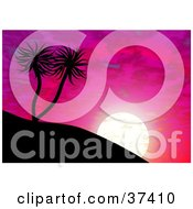 Clipart Illustration Of Palm Trees On A Hill Silhouetted Against A Purple And Pink Sunset