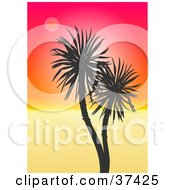 Clipart Illustration Of A Palm Tree Silhouetted Against A Gradient Orange And Red Sunset