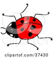 Clipart Illustration Of A Crawling Red Ladybug by Prawny