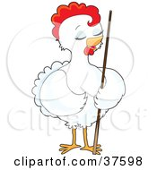 Pretty White Female Chicken Standing With A Billiards Pool Cue Stick