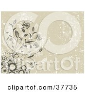 Clipart Illustration Of A Floral Grunge Background Of Brown Circles And Flowers With Scratches On Beige