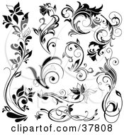 Clipart Illustration Of Black Flowers And Flourishes