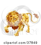 Leo The Lion With The Zodiac Symbol