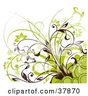 Clipart Illustration Of A Green And Brown Corner Of Flowers Plants And Circles by OnFocusMedia