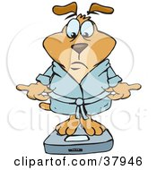 Clipart Illustration Of A Disappointed Brown Dog In A Rob Standing On A Scale And Reading The Results by Dennis Holmes Designs