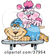 Clipart Illustration Of A Pink Poodle Masseuse Massaging A Relaxed Dogs Back by Dennis Holmes Designs