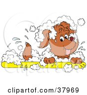 Clipart Illustration Of A Happy Dog In A White Sudsy Bath