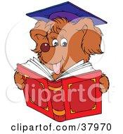 Graduate Dog Reading