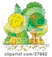 Clipart Illustration Of Autumn Leaves On The Ground In Front Of Trees In The Forest