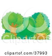 Clipart Illustration Of A Chopped Down Tree Stump At The Edge Of A Healthy Forest by Alex Bannykh