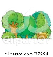 Clipart Illustration Of A Tree Stump At The Edge Of A Lush Forest by Alex Bannykh