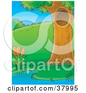 Clipart Illustration Of A Mature Tree With A Hole Beside A Pond With Cattails