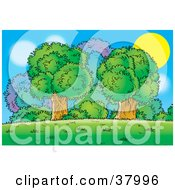 Clipart Illustration Of The Sun Behind A Cluster Of Mature Trees And Bushes by Alex Bannykh