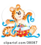 Clipart Illustration Of A Birthday Tiger Unwrapping A Present With Blue Ribbons by Alex Bannykh