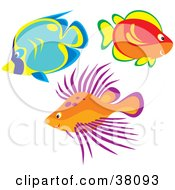 Clipart Illustration Of A Group Of Blue Red Orange And Purple Fish