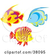 Clipart Illustration Of A Group Of Orange Purple And Blue Fish