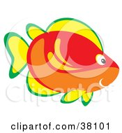 Clipart Illustration Of A Green Yellow Red And Orange Marine Fish