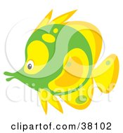 Clipart Illustration Of A Yellow And Green Saltwater Fish