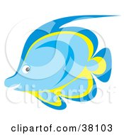Clipart Illustration Of A Blue And Yellow Marine Fish