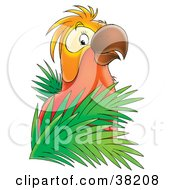 Clipart Illustration Of A Red And Orange Parrot Perched In Palms by Alex Bannykh