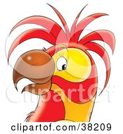 Clipart Illustration Of A Friendly Yellow And Red Parrots Face by Alex Bannykh