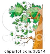 Clipart Illustration Of Branches With Green Foliage On The Side Of A Tree by Alex Bannykh