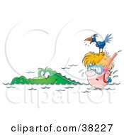 Clipart Illustration Of A Bird On Top Of A Snorkelers Head Squawking At An Alligator