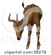 Clipart Illustration Of A Curious Brown Antelope With Short Antlers