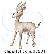 Clipart Illustration Of A Goofy Beige Antelope With Thick Antlers