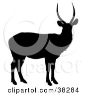 Clipart Illustration Of A Black Silhouette Of An Antelope With Slightly Curved Antlers