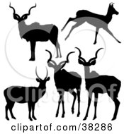 Clipart Illustration Of Five Silhouetted Antelope In Black