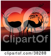 Clipart Illustration Of Two Antelope Grazing And Silhouetted On A Hill Against A Red Sunset