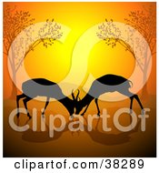Clipart Illustration Of Two Young Male Antelope Engaged In Battle Their Antlers Entwined Against An Orange Sunset by dero