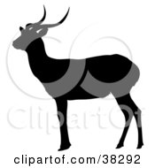 Clipart Illustration Of A Black Silhouette Of A Gazing Antelope