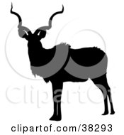 Clipart Illustration Of A Black Silhouette Of A Male Antelope With Curly Antlers by dero