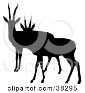 Clipart Illustration Of A Black Silhouette Of Two Alert Antelopes