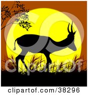Clipart Illustration Of A Lone Antelope Walking In Grass Silhouetted Against A Yellow And Orange Sunset