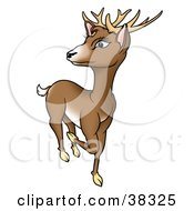 Clipart Illustration Of A Brown Buck Deer Prancing And Looking Back by dero