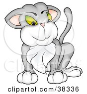 Clipart Illustration Of A Proud Gray Cat With A Furry Chest by dero