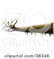 Clipart Illustration Of A Dead Fallen Tree Trunk